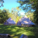 Bell Tents is shady setting